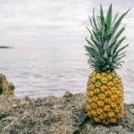 Фонд Pineapple отдаёт очередные 5 миллионов долларов на помощь бедным