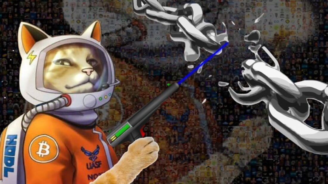 Биткоин кот астронавт