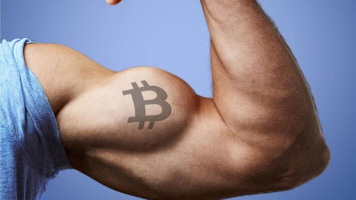 биткоин бицепс криптовалюта