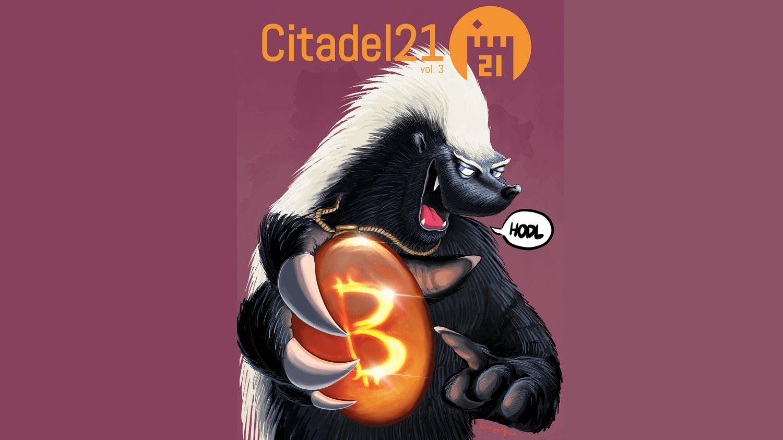 Новый выпуск Citadel 21