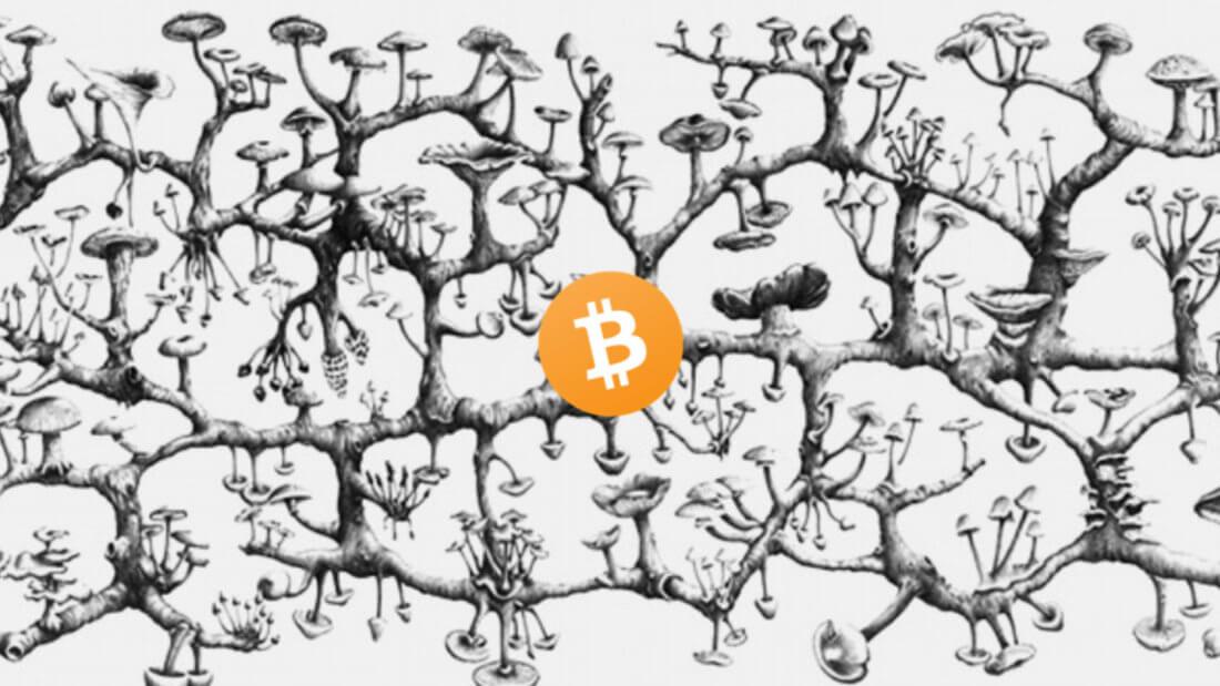децентрализация Биткоин блокчейн