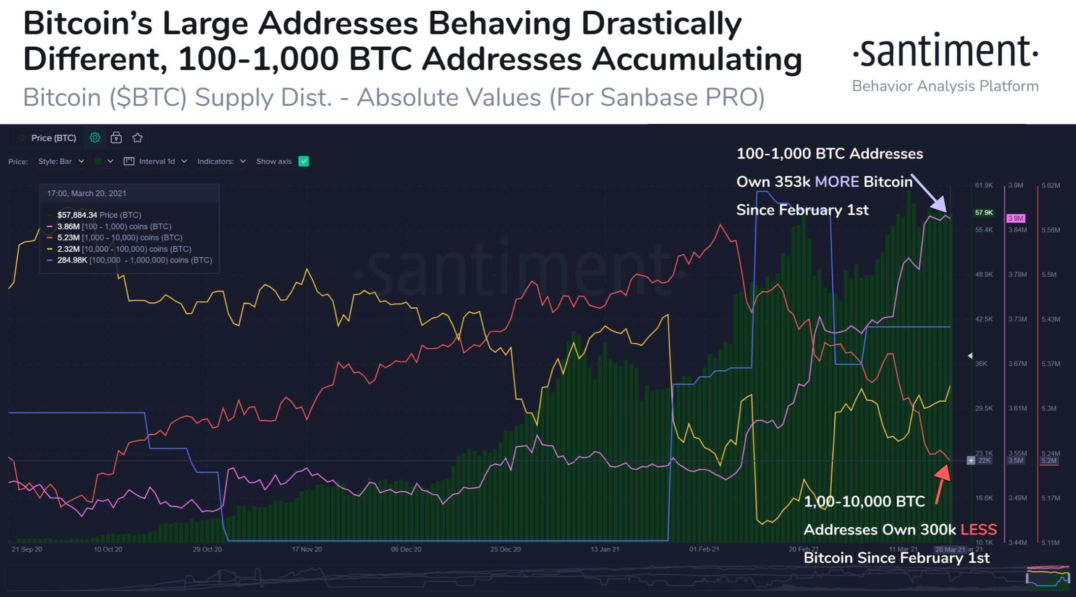 график криптовалюты трейдинг