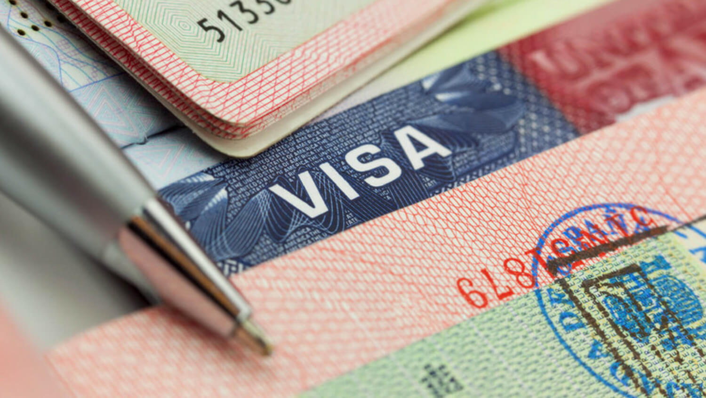 Visa карта система