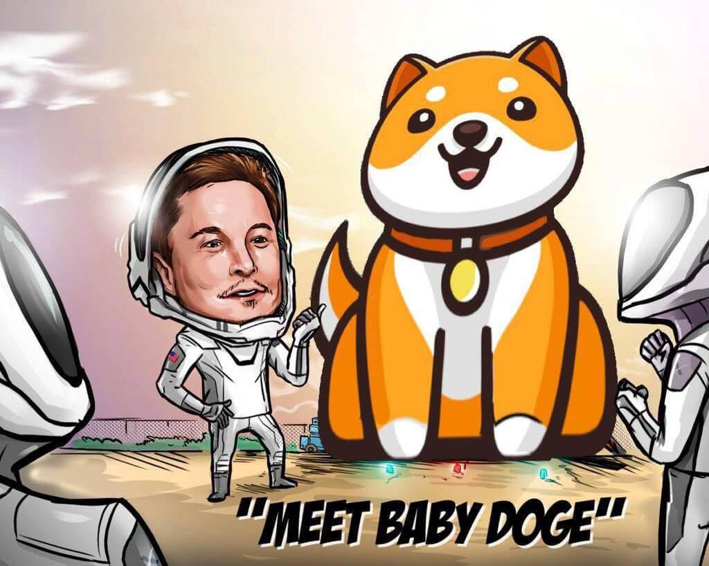 илон маск baby doge криптовалюты