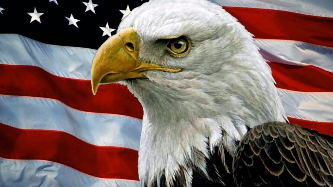 Америка орел США флаг